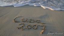 054 - Schrijven in het zand...