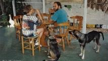 Arnoud & Leo + Knoeki & Chiki