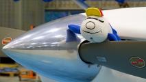 Ko heeft het vliegtuig al goedgekeurd!