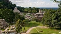 119 - @ Palenque