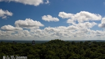 036 - Tikal
