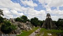 043 - Tikal