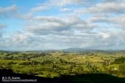 Nieuw-Zeelandse landschap