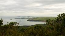 Uitzicht over een van de baaien bij Auckland