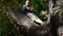 Ik net als Frodo in de boom