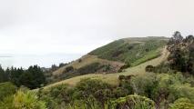 Panorama uitzicht over Nelson