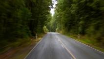 De route door het bos