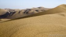 De woestijn bij Ica