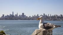 Uitzicht op San Francisco