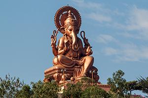 India – februari 2014